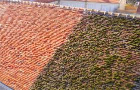 Le démoussage de toiture : quand et comment ?