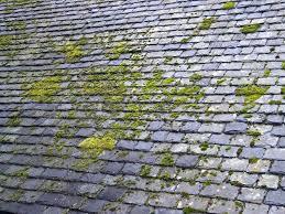 quand démousser la toiture ?